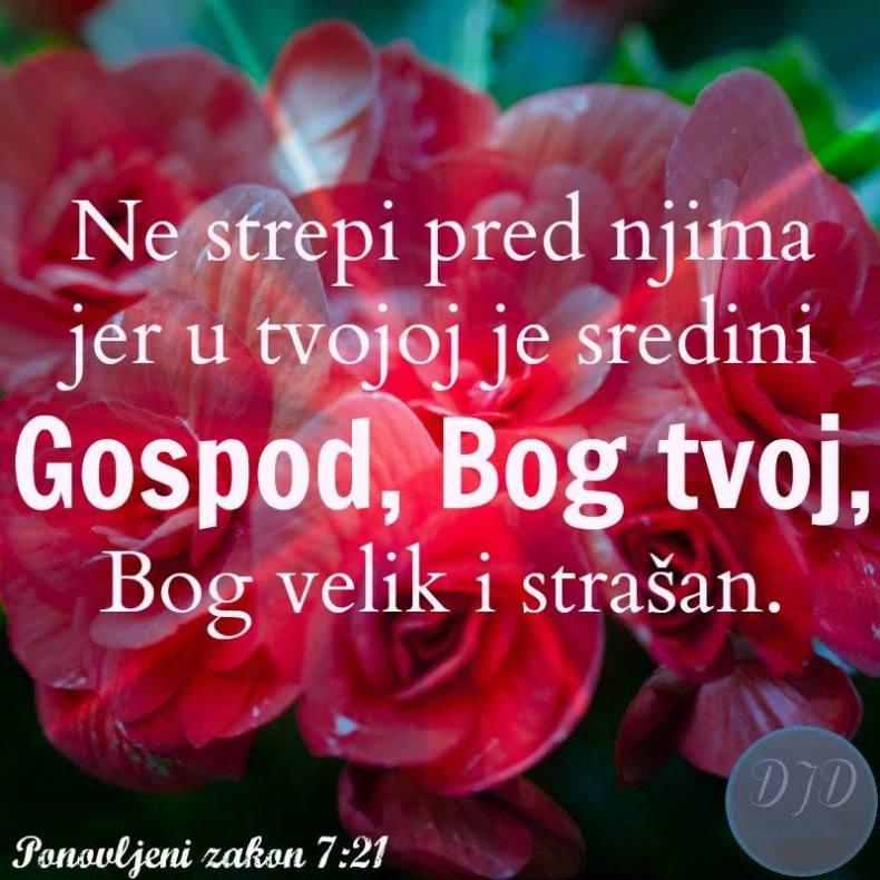 stih - 7