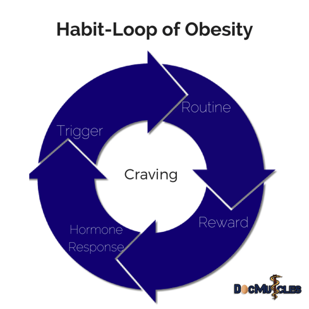 Habit-Loop of Obesity DocMuscles #KetonianKing Adam Nally