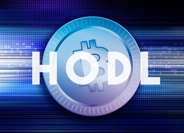 What is HODL? – Bitcoin HODL Meaning & Definition