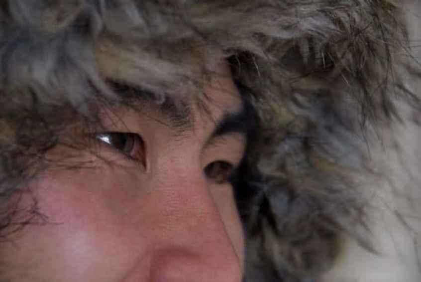 Greenland Eskimos, Diet and Heart Disease