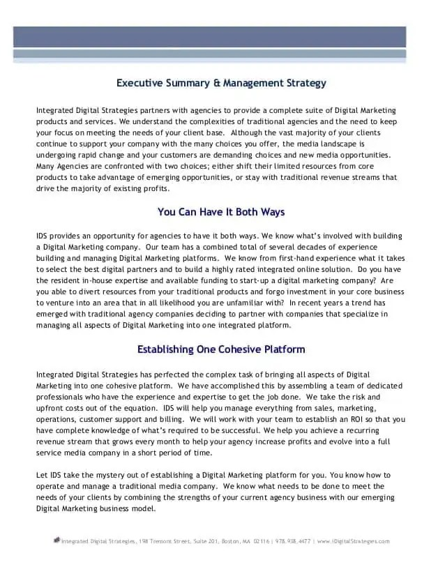 Executive Summary Template 67484  Management Summary Template