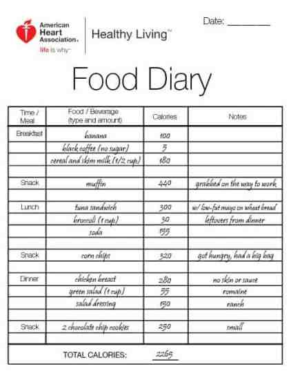 food journal 49741