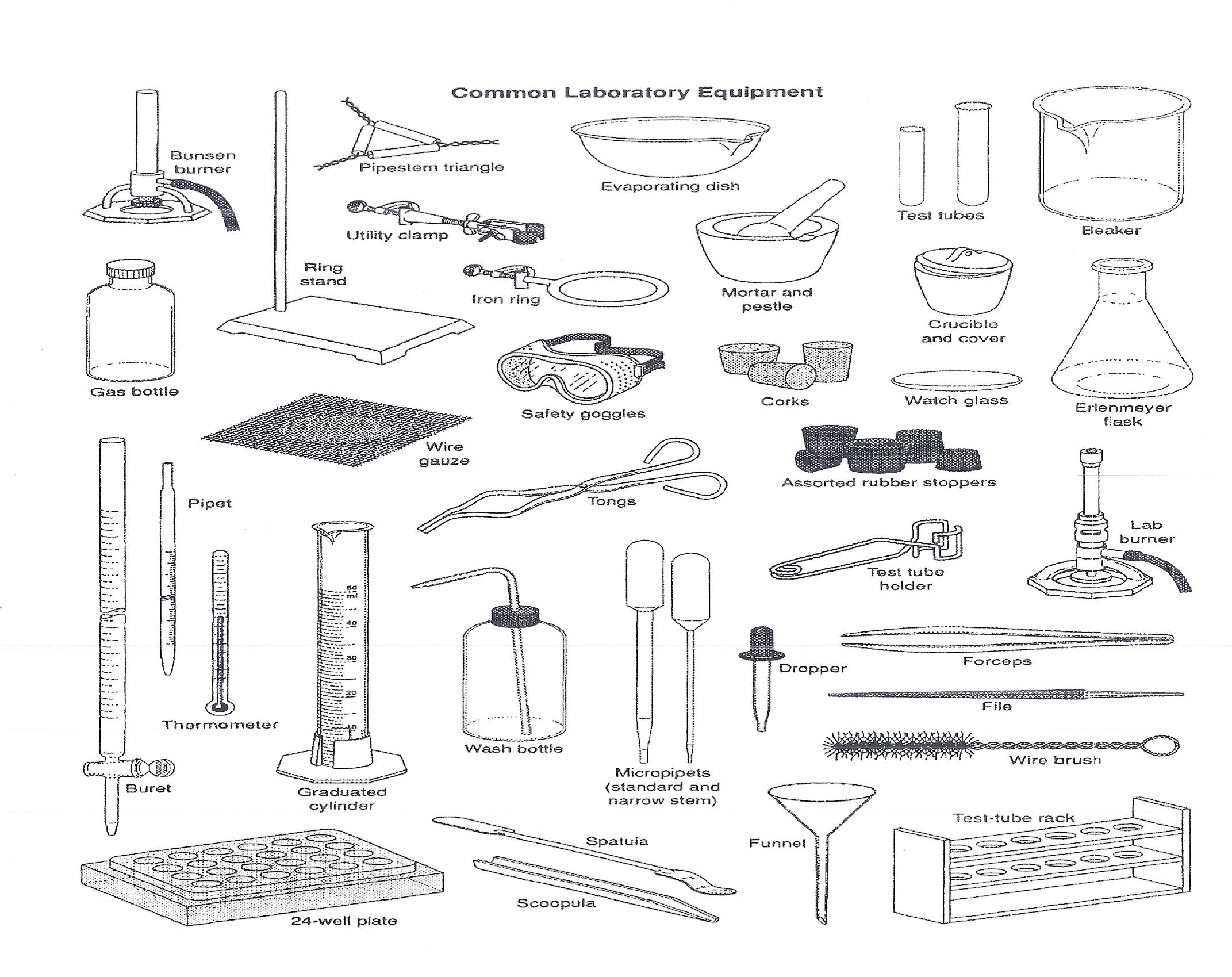 Common Laboratory Equipment Quiz