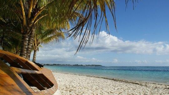 Top 5 des destinations incontournables à l'île Maurice