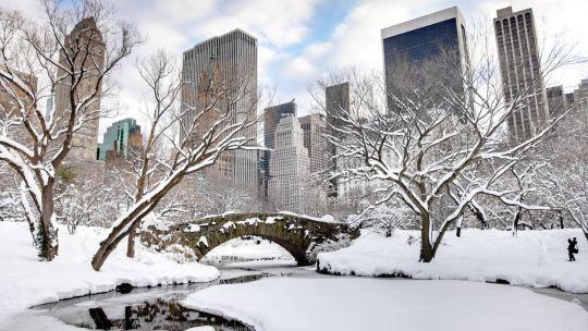 6 raisons d'aller à New-York en hiver
