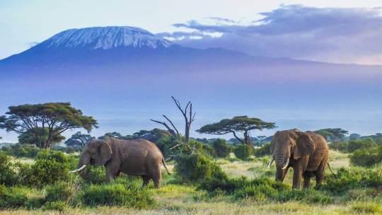 10 activités à ne pas rater en Tanzanie