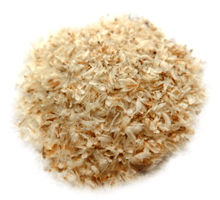tégument de psyllium blond