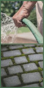 jardinage avec le bicarbonate de docteur nature