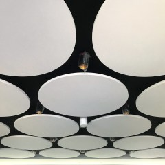 Feature Ceiling Circles
