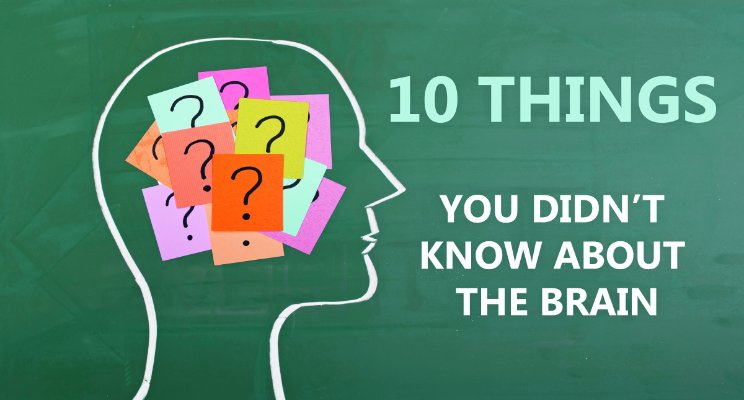 10 Things you did not know about your brain