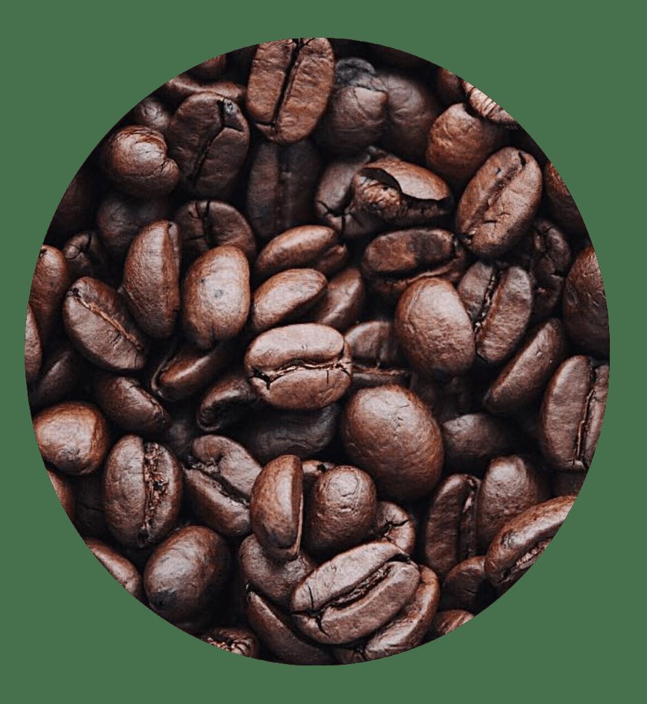 coffee enema detox treatment doctor nyree tarpon springs
