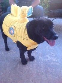 Perro disfrazado de submarino negro