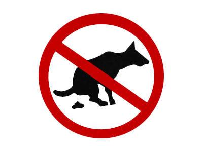No recoger los excrementos de los caninos tendrá una sanción de 98.360 pesos. Foto: canariaselmundonoticias.wordpress.com
