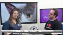 Entrevista con María Camila Gómez