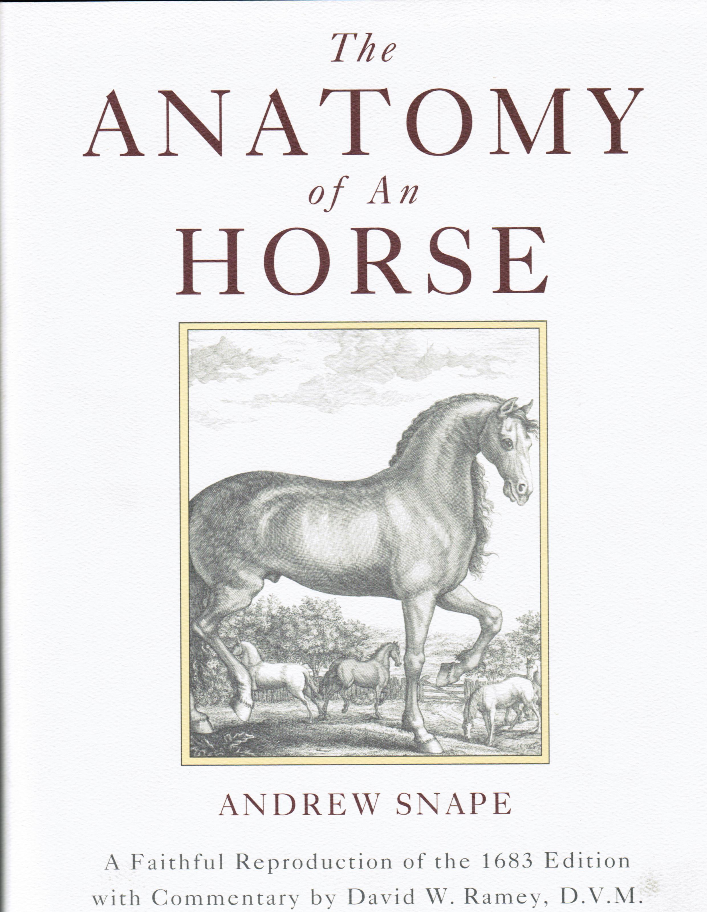 The Anatomy of An Horse - David Ramey, DVMDavid Ramey, DVM