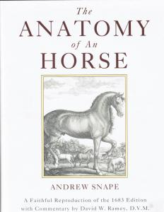 The Anatomy of An Horse – David Ramey, DVM