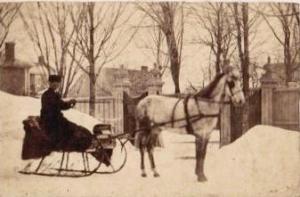 Horse.sleigh