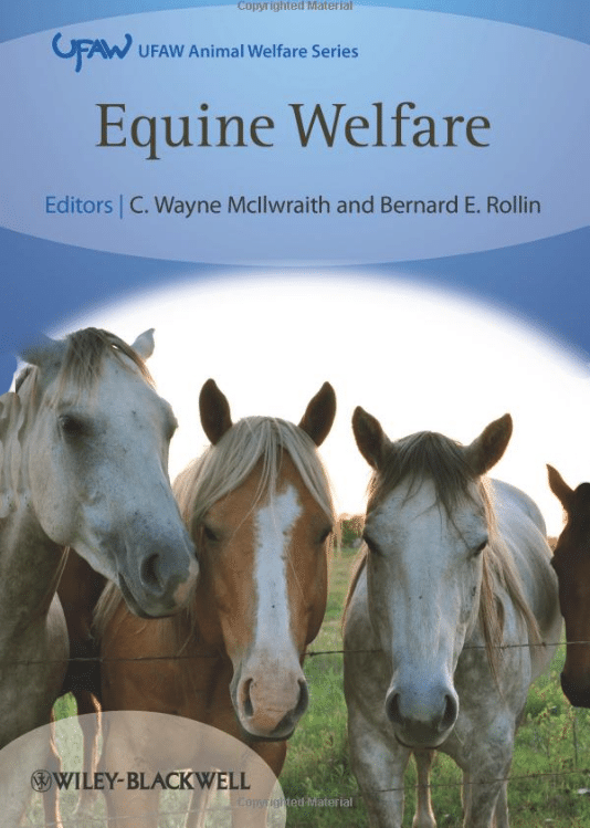 Equine-Welfare.png