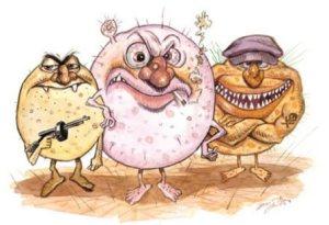 bacteria_cartoon