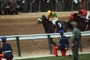 Approaching the Finish of the Kentucky Derby