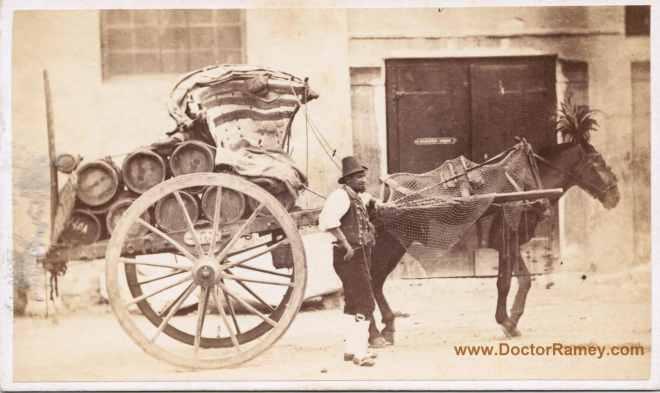 DoctorRamey.com(cart)