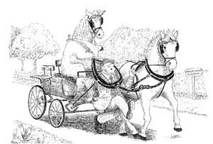 No_Hoof_No_Horse