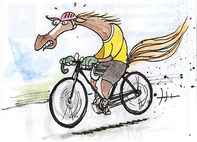 horse.exercising.jpg