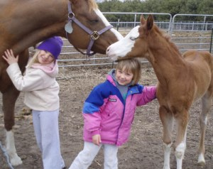 kids-and-horses