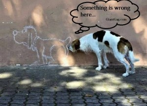 something-is-wrong-here