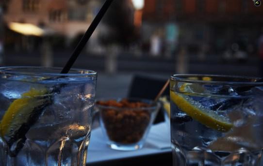 Fenomenologia del gin tonic