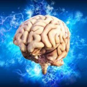 Creier sanatos si minte brici! Alimentele care fac minuni la nivel cerebral