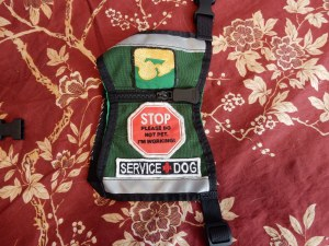 """Green sit stay vest with PSDP patch on one side, and stop sign and new """"service dog"""" patch with a red cross between the words."""