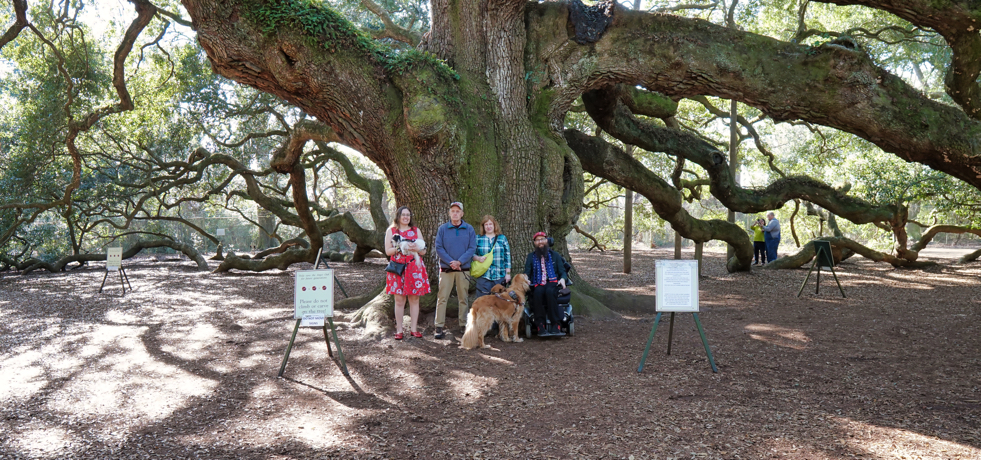 Another view of the Angel Oak tree, from the base of the tree.  It is at least 12 feet in diameter!  Veronica with Hestia, Kent with Linus, Jenine with Roger, and Brad with his power wheelchair stand dwarfed underneath the size of the tree.