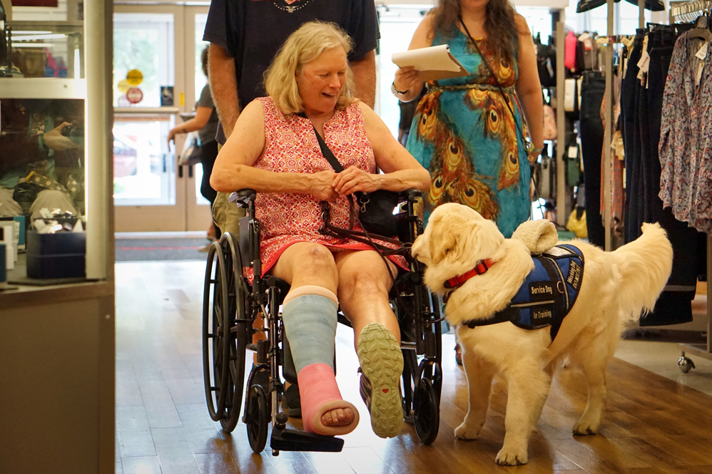 Mick is pushing Barbara down the main aisle of TJ Maxx.  Barbara is happily talking to Tripper, who is just slightly askew but looking at Barbara.
