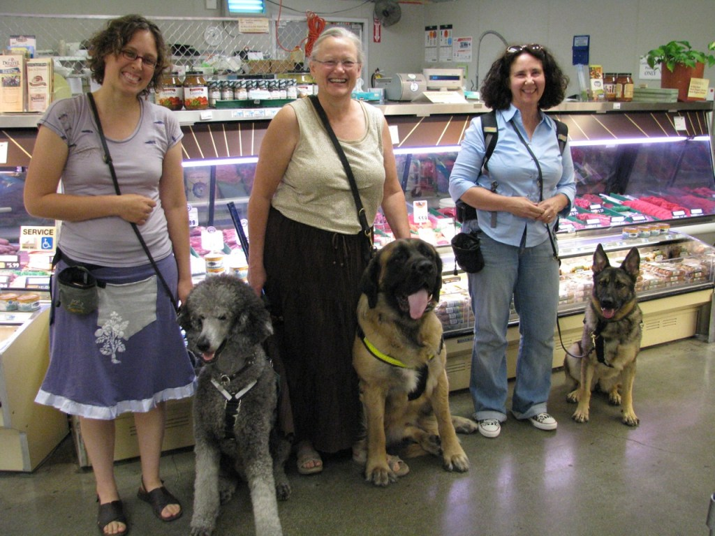Veronica with Ollie, Jeanne with Teagan (English Mastiff), and Linden with Iris (German Shepherd)