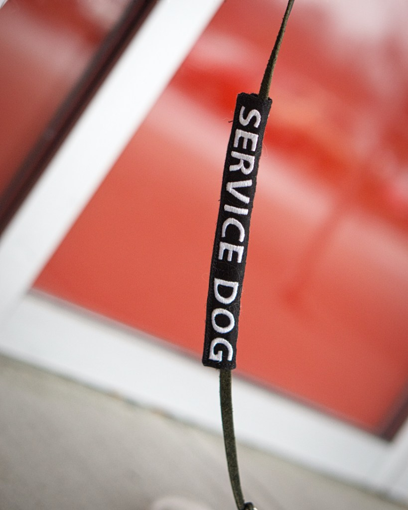 """Hestia's """"service dog"""" leash slide is black with white lettering."""