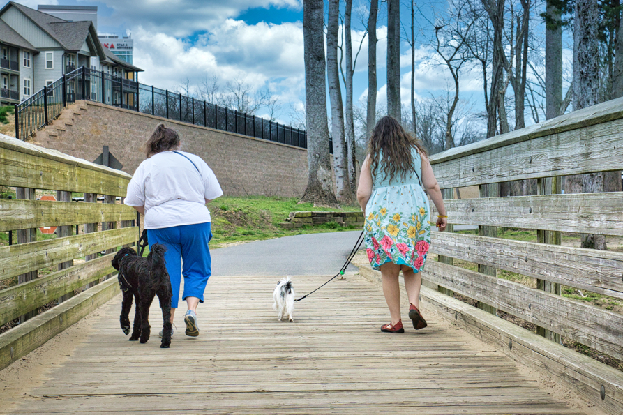 Christi with Gabby and Veronica with Hestia walking back across the wooden bridge.