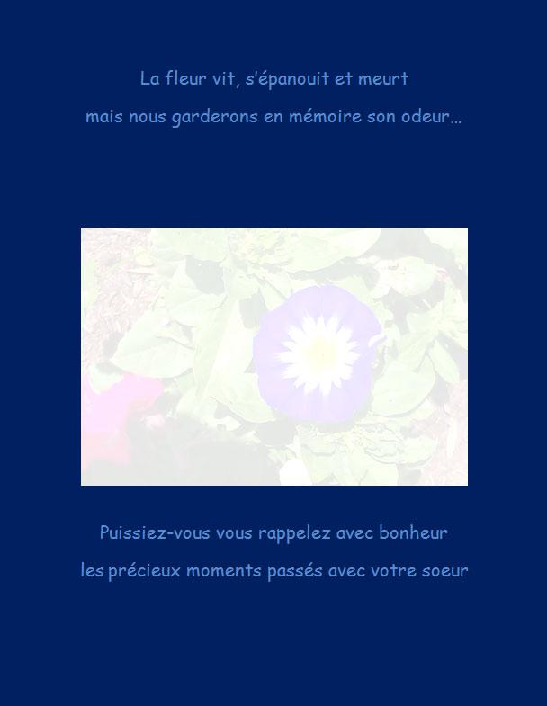 Message de condoléances | La fleur vit