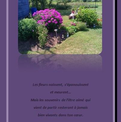 Lettre de condoléances… Les fleurs naissent