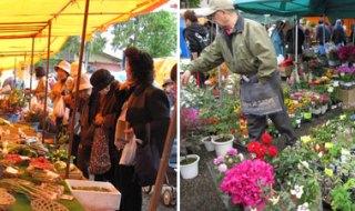 柳町児童公園で野菜果物、山菜が買える七日市日