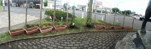 駅前広場の花壇装飾