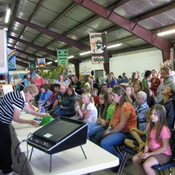 4-H Youth 'Learn By Doing' at the County Fair
