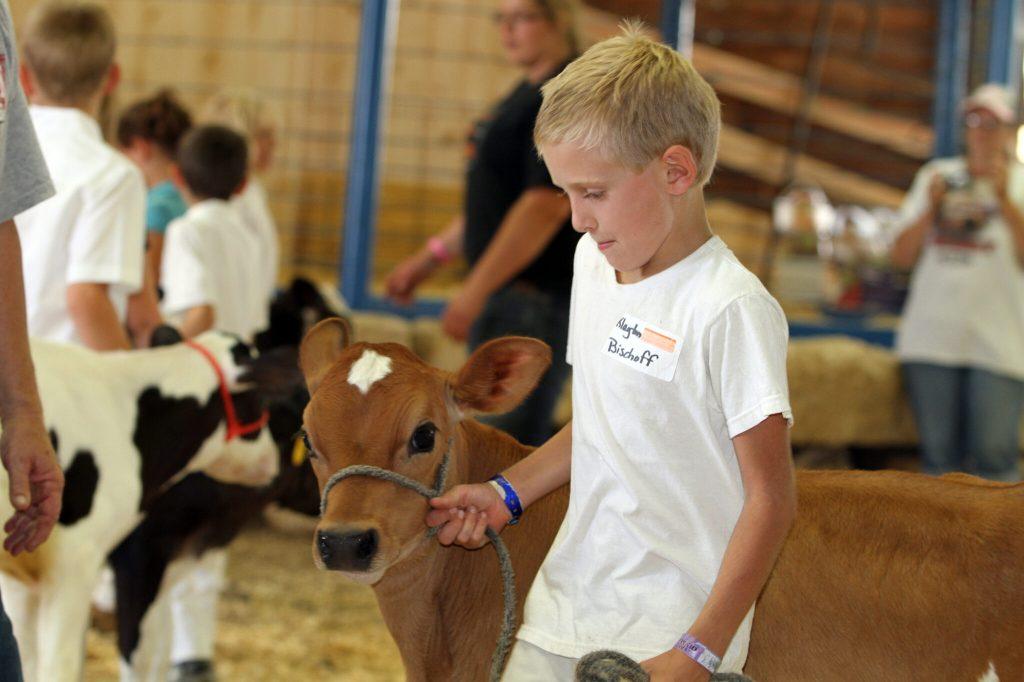Little Britches Showmanship at the Fair near Beaver Dam WI