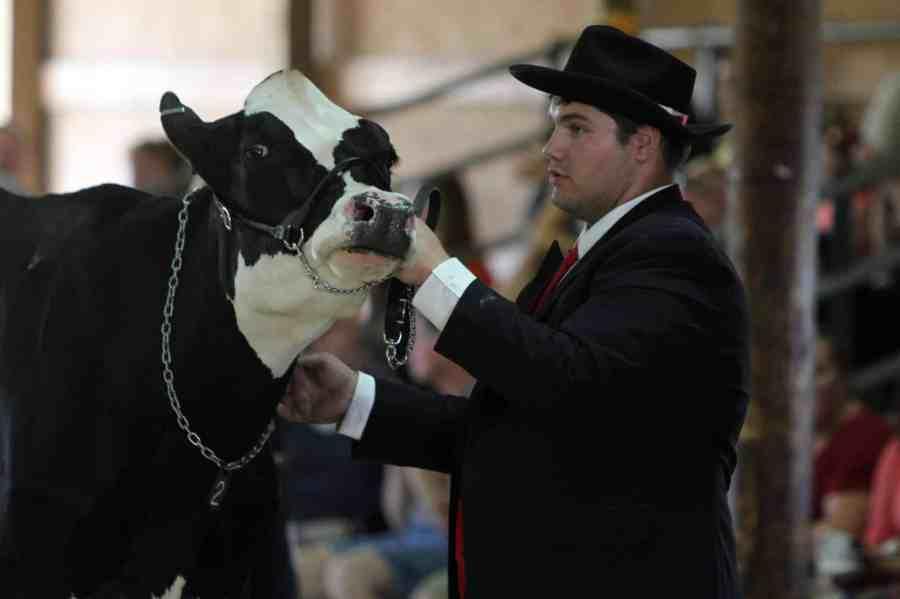 Futurity Showmanship at County Fair