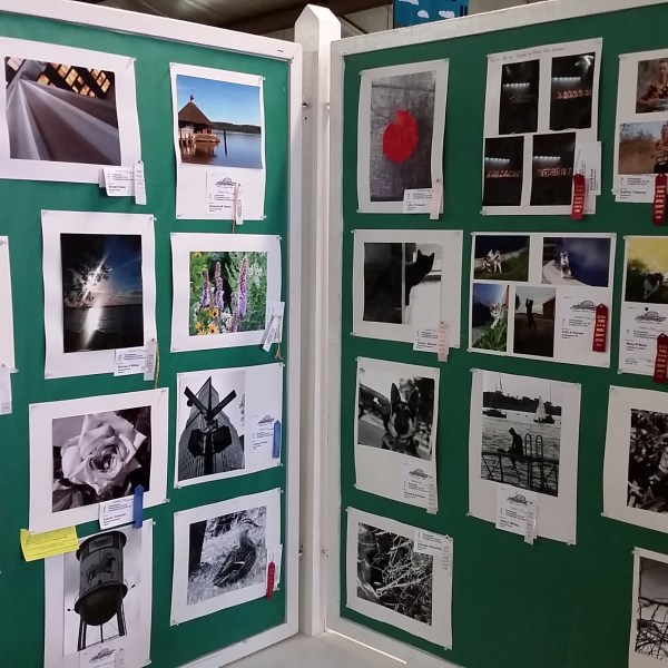 Junior Fair Photography Judging Results