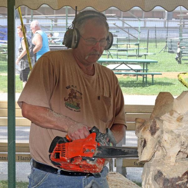 Chainsaw Carving Auction