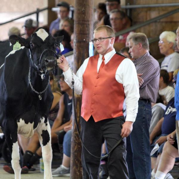 Dodge County Holstein Futurity Show