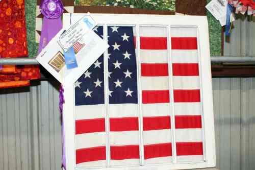 Home Environment Junior Fair Contest