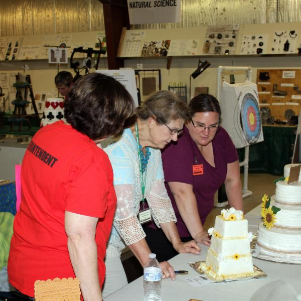 Junior Fair Cake Decorating Judging