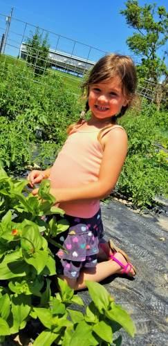Maddy Grosenick gardening